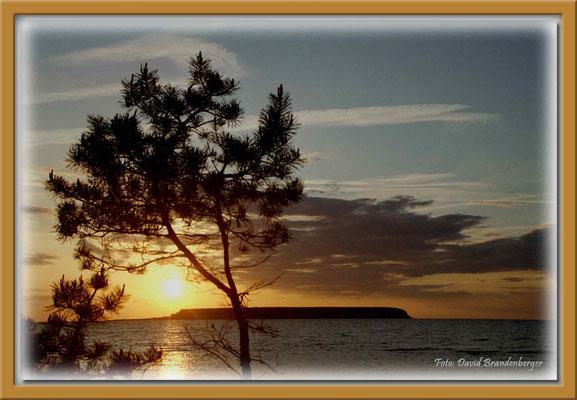 A0148.Ekstakustens NR.Gotland.SE