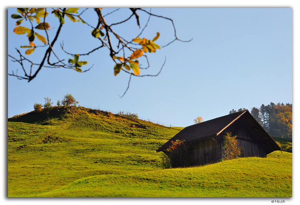 CH1029.Wald.ZH