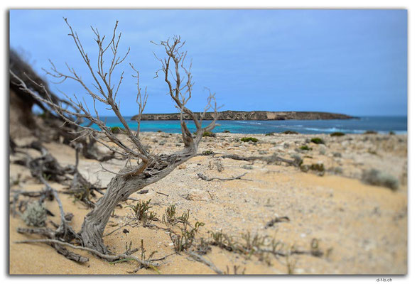 AU1020.Coffin Bay N.P. Golden Island Lookout