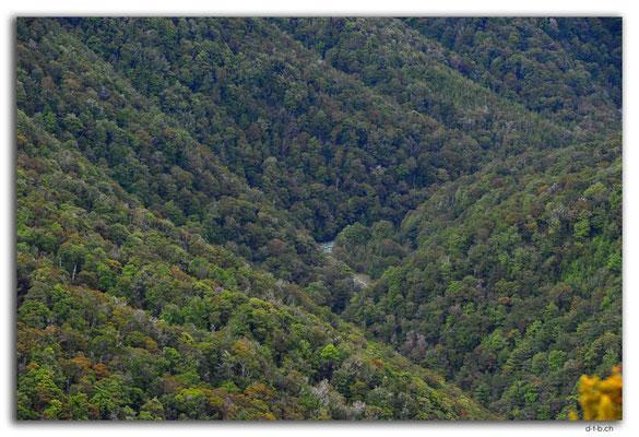 NZ0584.Anatoki Track.Waingaro River