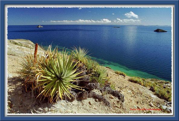 11.Isla del Sol,Bolivien