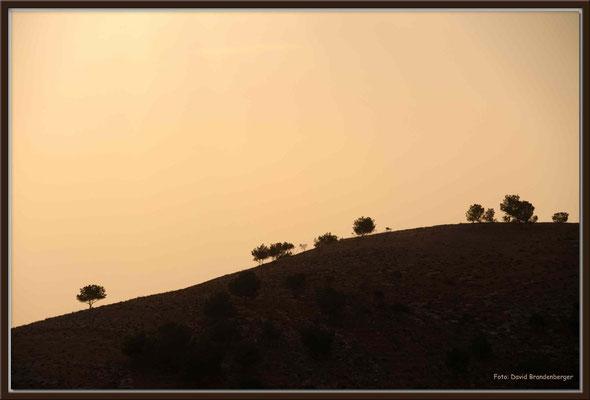 JO065.Aussicht Mount Nebo