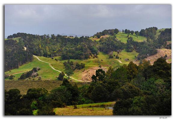NZ0062.Aussicht von Kaiwaka