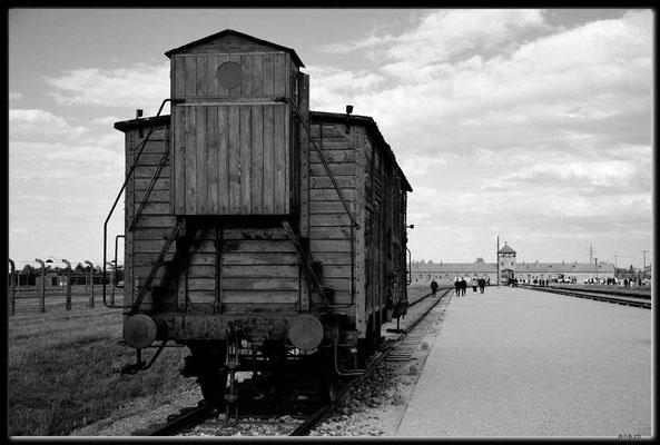 PL050.Birkenau.Waggon