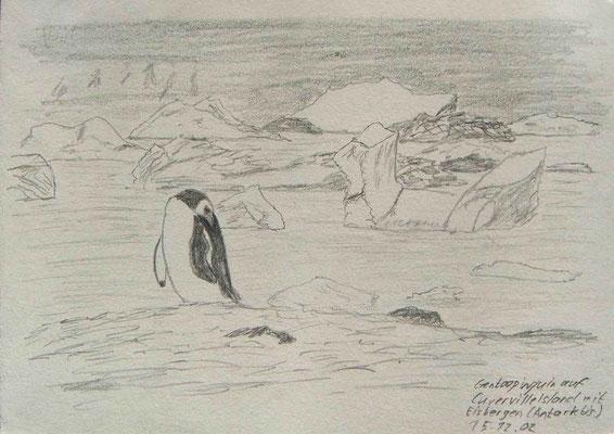 020.Skizze, Gentoopinguin auf Cuverville Island mit Eisbergen /Antarktis