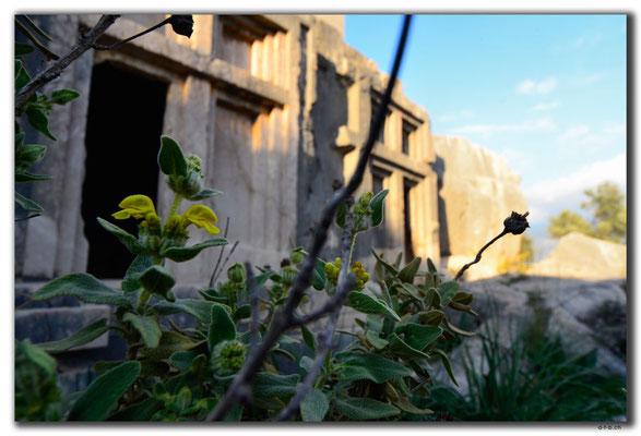 TR0219.Xanthos.Nekropolis