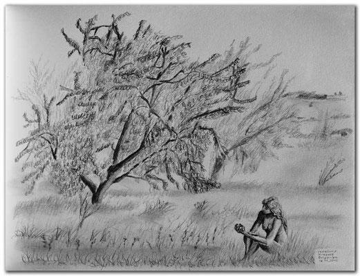 147.Skizze.Obstbäume.Krepost.Bulgarien