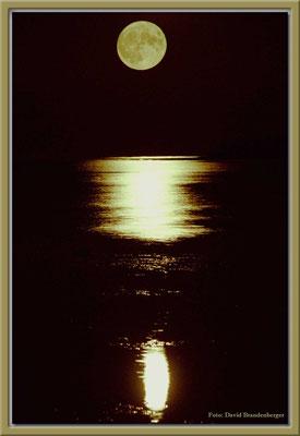 A0161.Mond.Slite.Gotland.SE