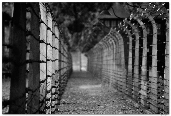 PL006.Auschwitz.Todeszaun