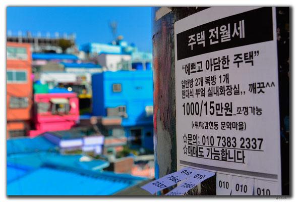 KR0294.Busan.Gamcheon Cultural Village