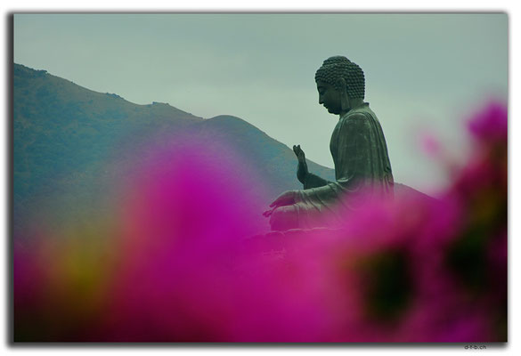 HK0025.Big Buddha