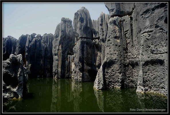 C0852Stone Forest