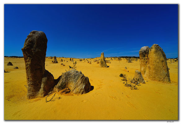 AU0583.Nambung N.P.Pinnacles