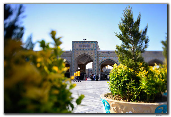IR0388.Mashhad.Holy Shrine