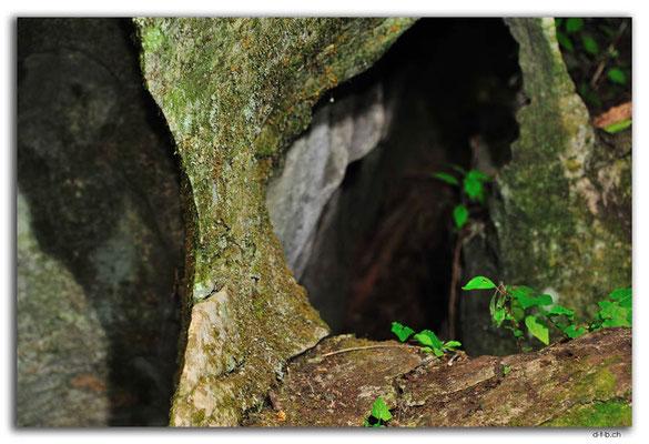 NZ0558.Labyrinth Rocks
