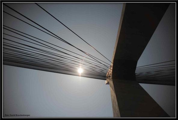 C1504 Donghai Bridge