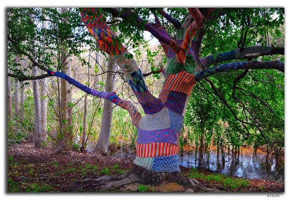 AU0737.Waroona.Bestrickter Baum