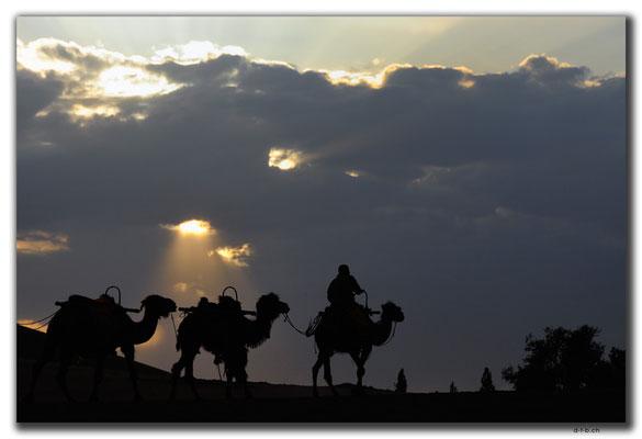 CN0098.Dunhuang.Camels