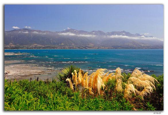 NZ0703.Kaikoura.Peninsula.Sea and Mountains