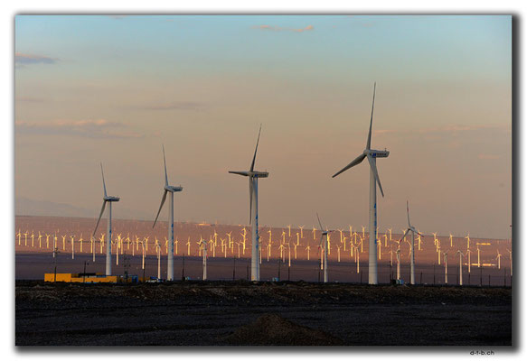 CN0038.Windpark am Abend