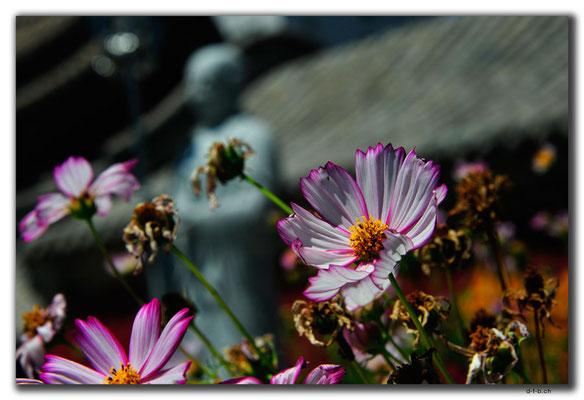 CN0343.Xuanhua.Buddhatempel