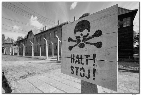 PL010.Auschwitz.Schild und Turm