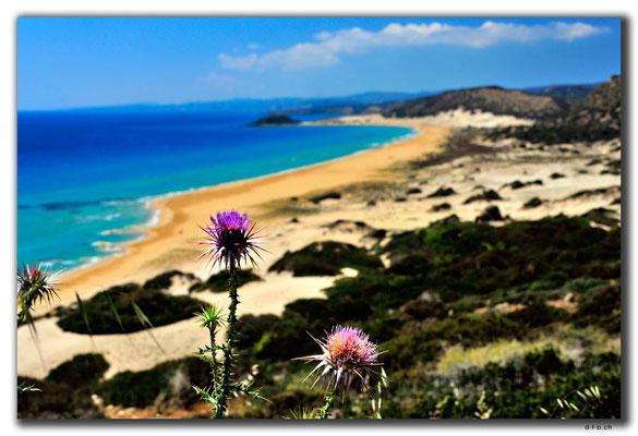 TR0586.Golden Beach