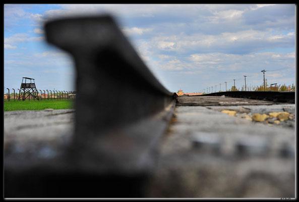 PL047.Birkenau.Schienenstrang