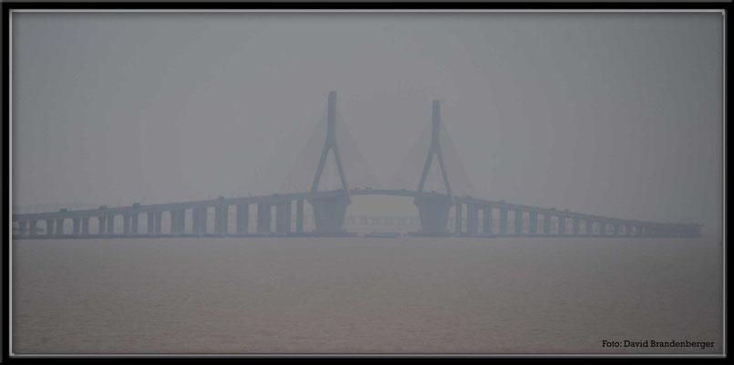 C1491 Donghai Bridge