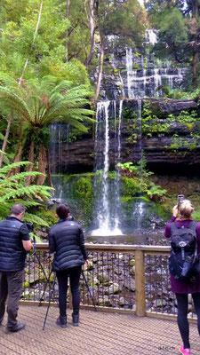 Australien.Tasmanien.Russell Falls