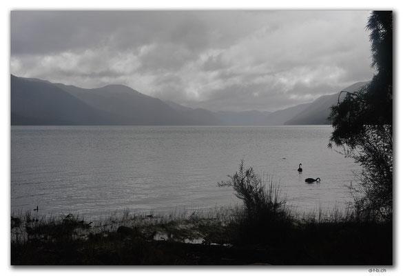 NZ0673.Nelson Lakes N.P.Lake Rotoroa