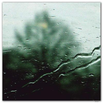 DE225.Regentropfen am Zugfenster