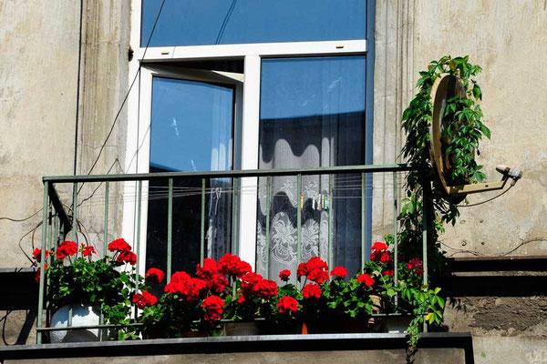 Polen, Lodz: Empfang gut!