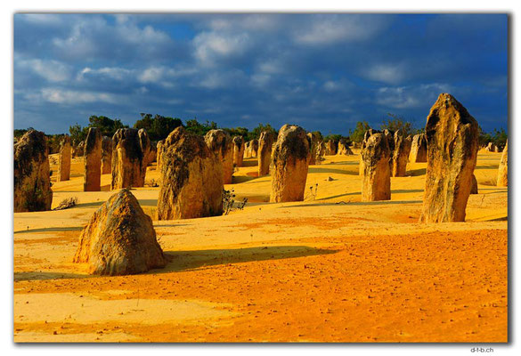 AU0602.Nambung N.P.Pinnacles
