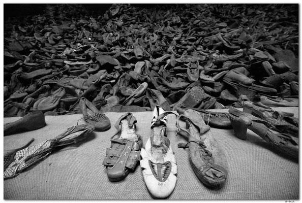 PL017.Auschwitz.Schuhe