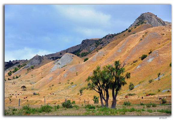 NZ0693.Hills beside the road
