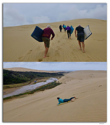 NZ0118.Sand Dune boarding at Te Paki