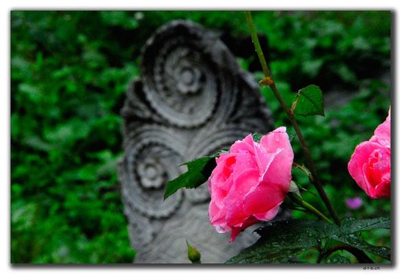 TR0972.Trabzon.Ottom.Friedhof