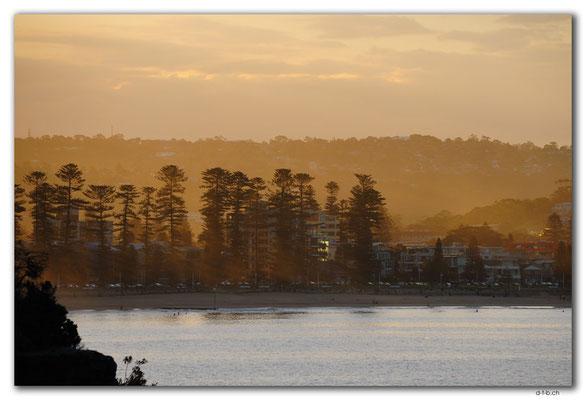 AU1546.Sydney.Shelly Headland Upper Lookout.Freshwater Beach