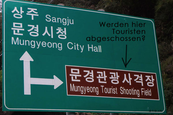 South Korea,Tourist shooting