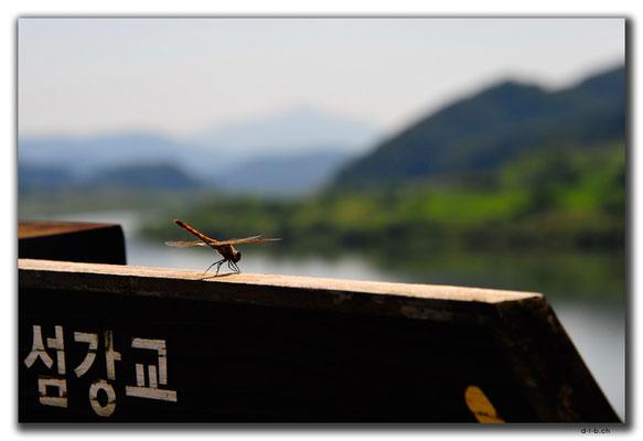 KR0127.Libelle