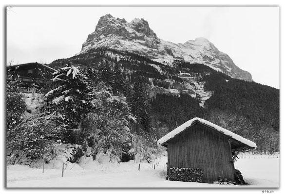 GW0007.Eiger