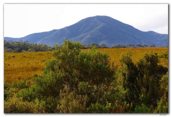 AU1434.Mt.Zeehan