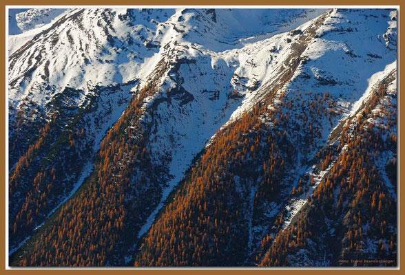 A0695.Nationalpark.CH
