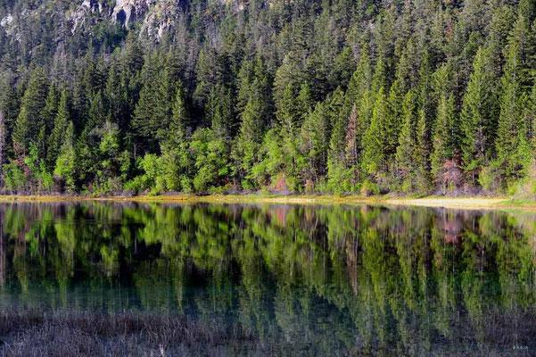 CA0188 Turquoise Lake