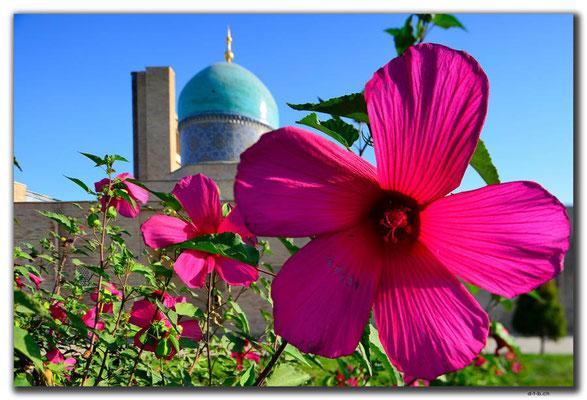 UZ0169.Tashkent.Barak Khan Medressa