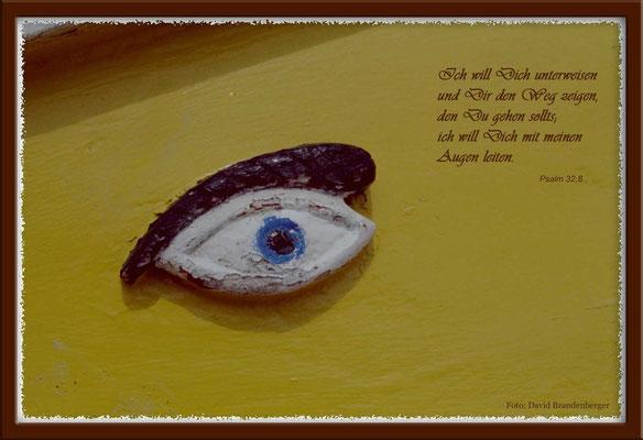 S0008,Schiffsauge,Malta.Psalm 32.8