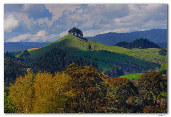 NZ0263.Bombay Hills