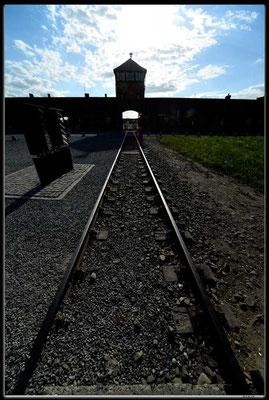 PL056.Birkenau.Weg des Todes