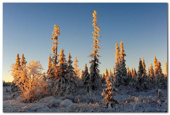 SE0093.Lapland Wilderness